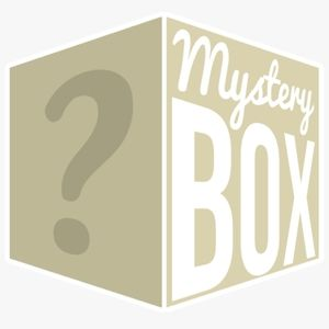 Girls Clothing Mystery Box!